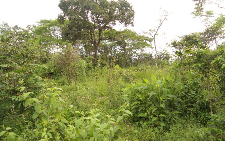 Foto de terreno habitacional en venta en, bugambilias del sumidero, xalapa, veracruz, 1290477 no 08
