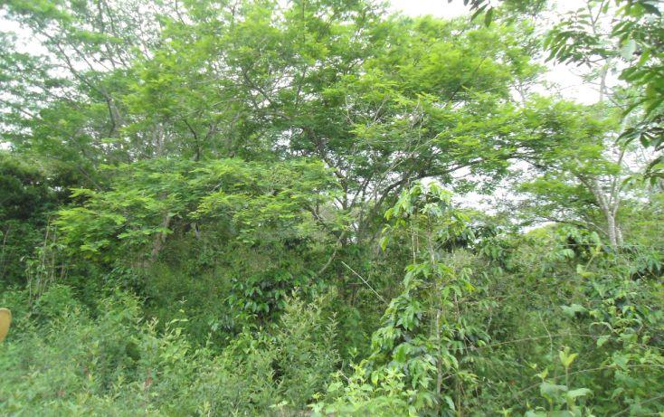 Foto de terreno habitacional en venta en, bugambilias del sumidero, xalapa, veracruz, 1290477 no 10