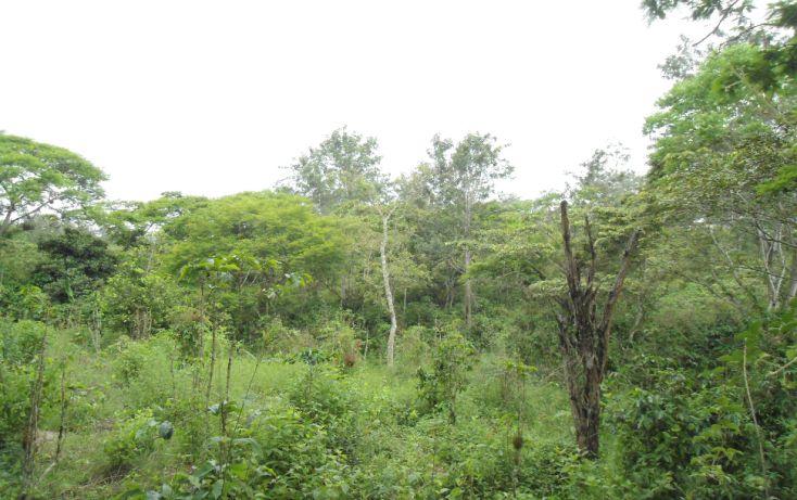 Foto de terreno habitacional en venta en, bugambilias del sumidero, xalapa, veracruz, 1290477 no 12