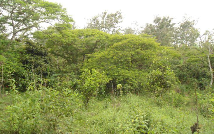 Foto de terreno habitacional en venta en, bugambilias del sumidero, xalapa, veracruz, 1290477 no 15