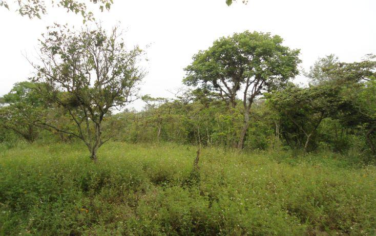 Foto de terreno habitacional en venta en, bugambilias del sumidero, xalapa, veracruz, 1290477 no 21
