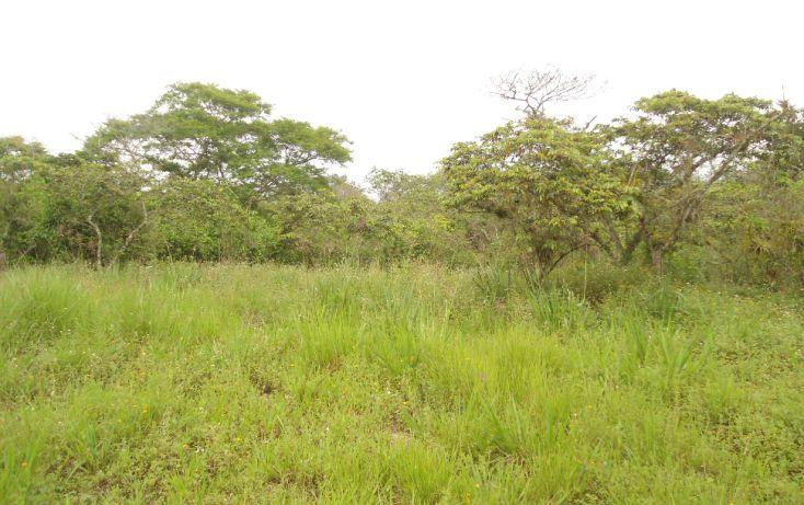 Foto de terreno habitacional en venta en, bugambilias del sumidero, xalapa, veracruz, 1290477 no 24