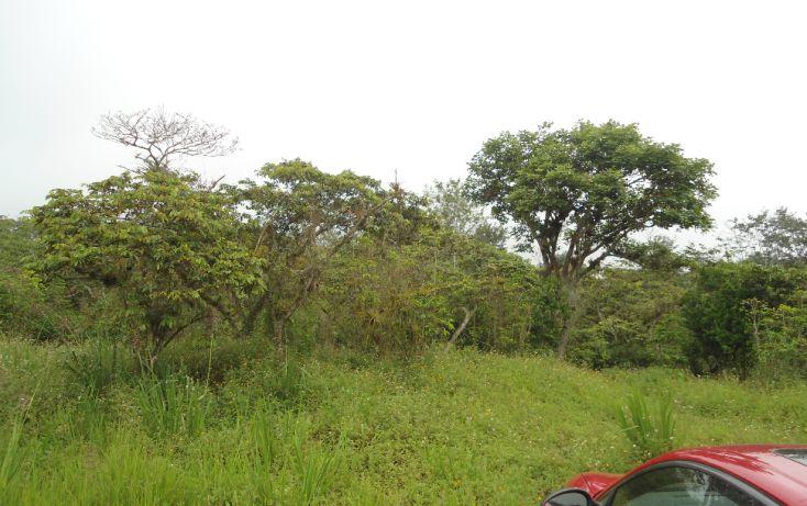 Foto de terreno habitacional en venta en, bugambilias del sumidero, xalapa, veracruz, 1290477 no 25