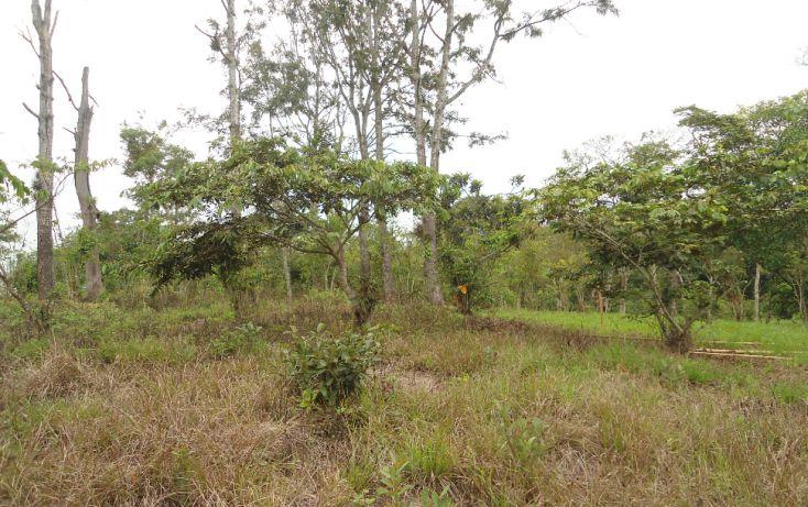 Foto de terreno habitacional en venta en, bugambilias del sumidero, xalapa, veracruz, 1290477 no 26