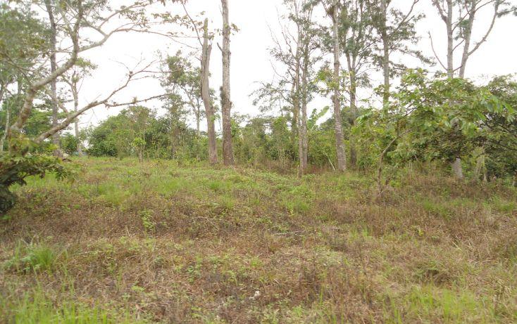 Foto de terreno habitacional en venta en, bugambilias del sumidero, xalapa, veracruz, 1290477 no 27