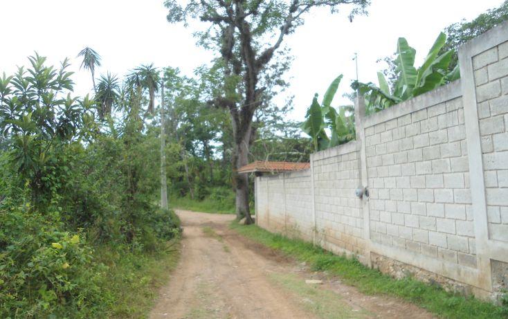 Foto de terreno habitacional en venta en, bugambilias del sumidero, xalapa, veracruz, 1290477 no 29