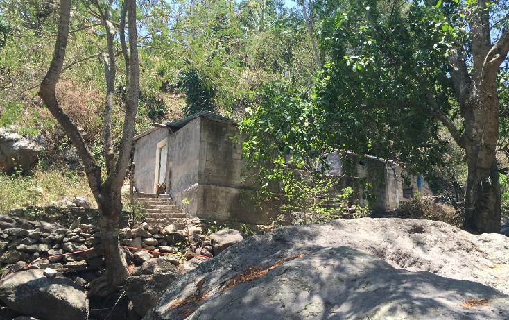 Foto de terreno habitacional en venta en  , bugambilias, puerto vallarta, jalisco, 1957976 No. 12
