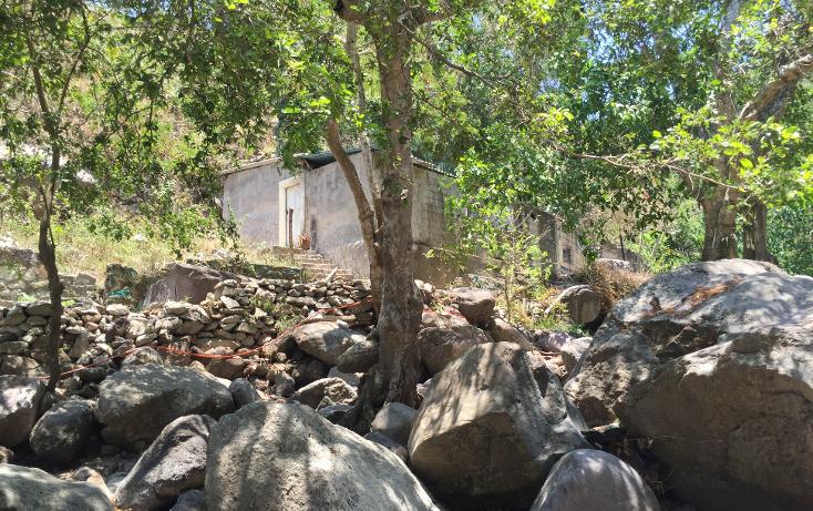 Foto de terreno habitacional en venta en  , bugambilias, puerto vallarta, jalisco, 1957976 No. 13