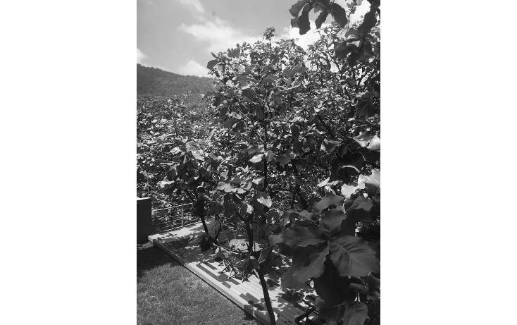 Foto de casa en venta en  , bugambilias, zapopan, jalisco, 1046909 No. 25