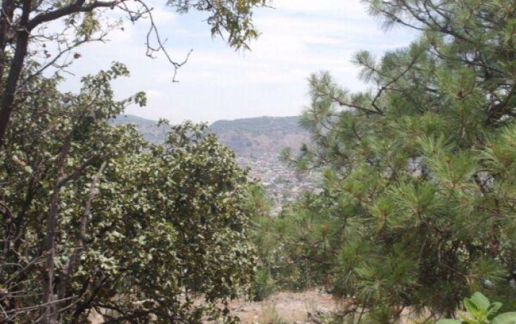 Foto de terreno habitacional en venta en, bugambilias, zapopan, jalisco, 1194579 no 03