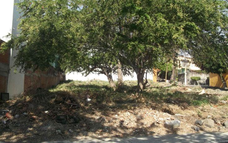 Foto de terreno habitacional en venta en, burgos bugambilias, temixco, morelos, 1046285 no 04