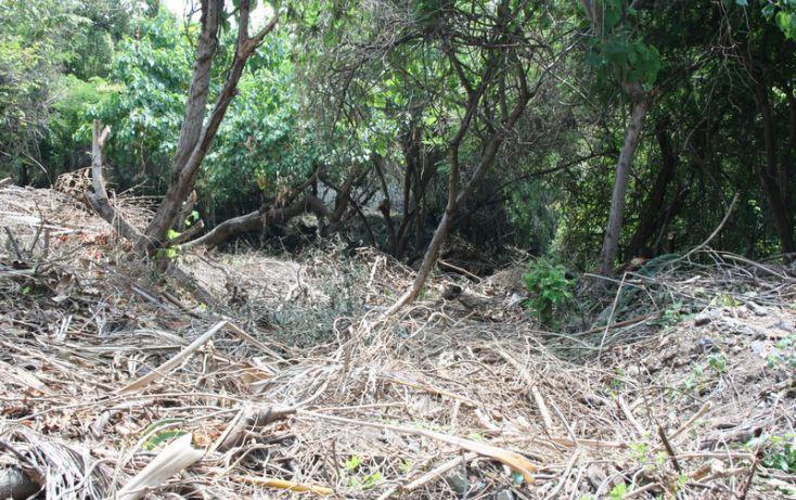 Foto de terreno habitacional en venta en, burgos bugambilias, temixco, morelos, 1098933 no 03
