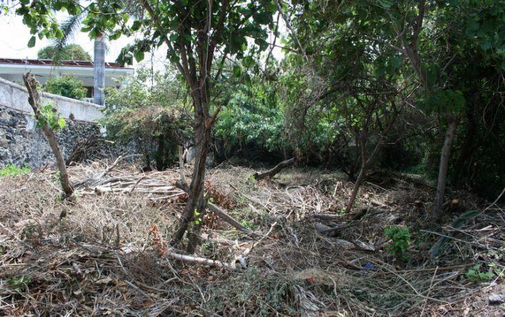 Foto de terreno habitacional en venta en, burgos bugambilias, temixco, morelos, 1098933 no 04