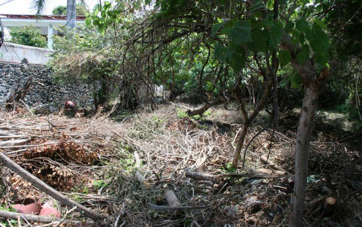Foto de terreno habitacional en venta en, burgos bugambilias, temixco, morelos, 1098933 no 05
