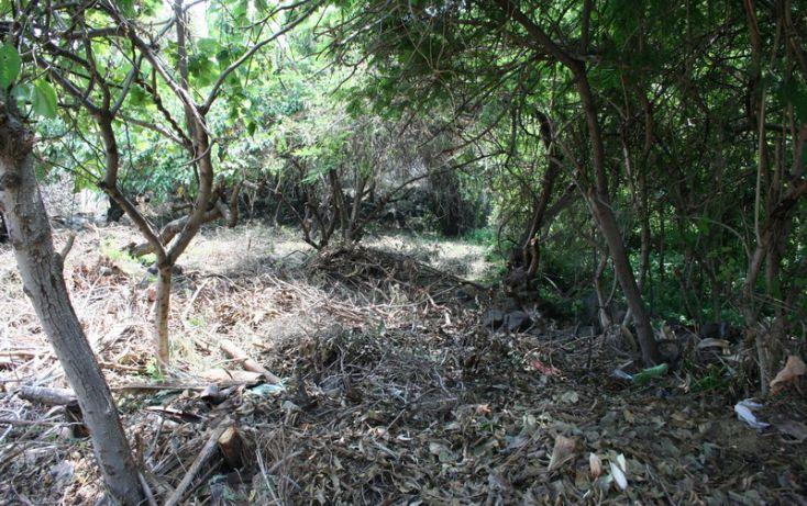 Foto de terreno habitacional en venta en, burgos bugambilias, temixco, morelos, 1098933 no 06
