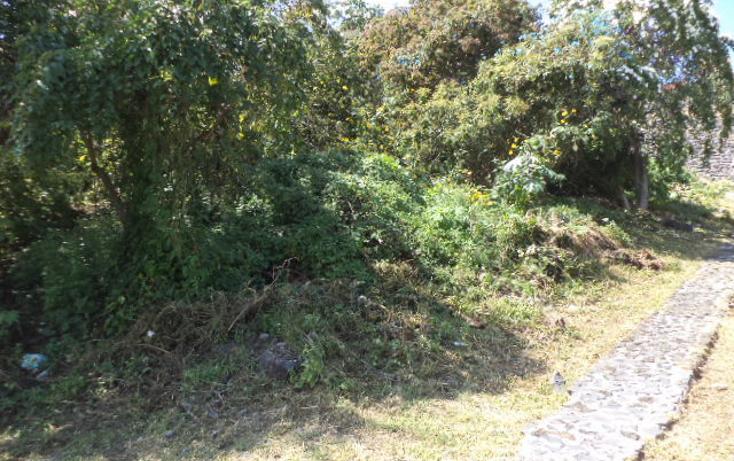 Foto de terreno habitacional en venta en  , burgos bugambilias, temixco, morelos, 1855930 No. 02