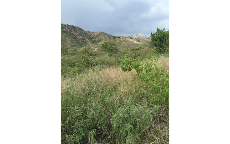 Foto de terreno habitacional en venta en  , burocrático, guanajuato, guanajuato, 1525173 No. 10