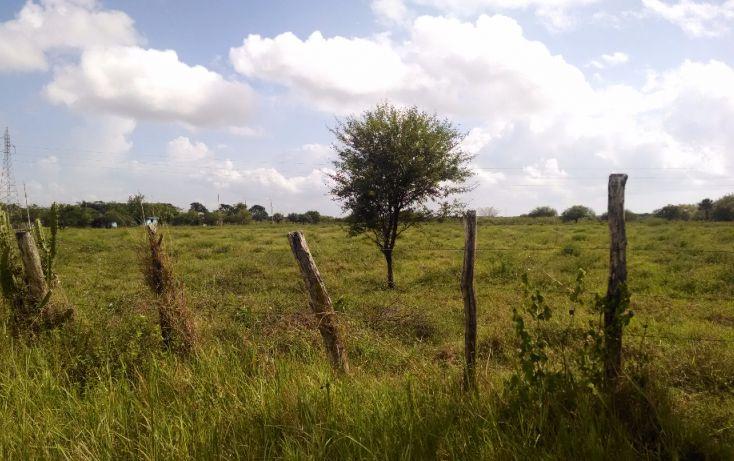 Foto de terreno comercial en renta en, bustos pemex, tampico alto, veracruz, 1393833 no 02