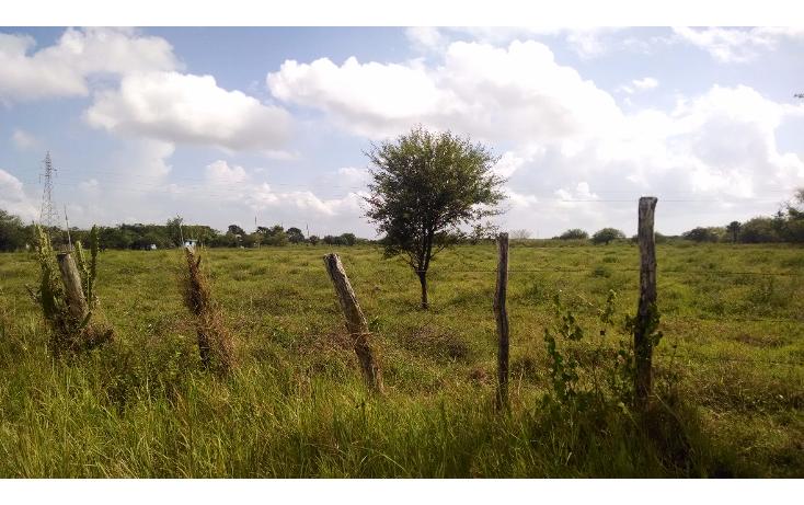 Foto de terreno comercial en renta en  , bustos pemex, tampico alto, veracruz de ignacio de la llave, 1393833 No. 02