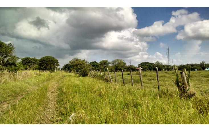 Foto de terreno comercial en renta en  , bustos pemex, tampico alto, veracruz de ignacio de la llave, 1393833 No. 04