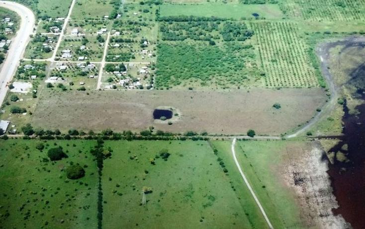 Foto de terreno comercial en renta en  , bustos pemex, tampico alto, veracruz de ignacio de la llave, 1393833 No. 05