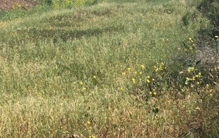 Foto de terreno habitacional en venta en c circuito pradera no5562 int 60, praderas de la gloria, tijuana, baja california norte, 1800156 no 07