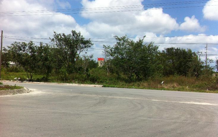 Foto de terreno industrial en venta en  , c t m, cozumel, quintana roo, 1052021 No. 03