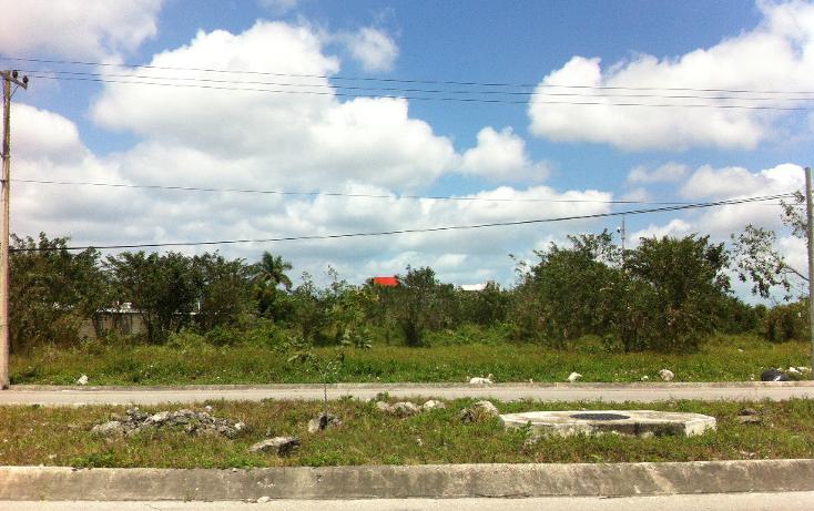 Foto de terreno industrial en venta en  , c t m, cozumel, quintana roo, 1052021 No. 04