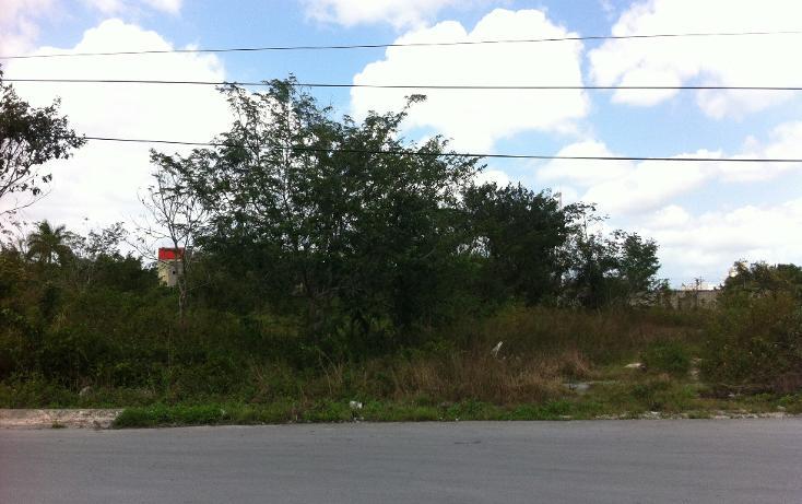Foto de terreno industrial en venta en  , c t m, cozumel, quintana roo, 1052021 No. 08