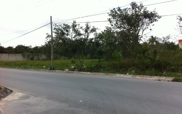 Foto de terreno industrial en venta en  , c t m, cozumel, quintana roo, 1052021 No. 09