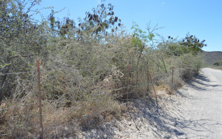 Foto de terreno habitacional en venta en  , cabo pulmo, los cabos, baja california sur, 1460023 No. 02