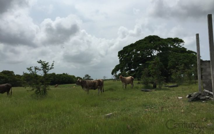 Foto de rancho en venta en cabo rojo, tamiahua, tamiahua, veracruz, 1720866 no 01