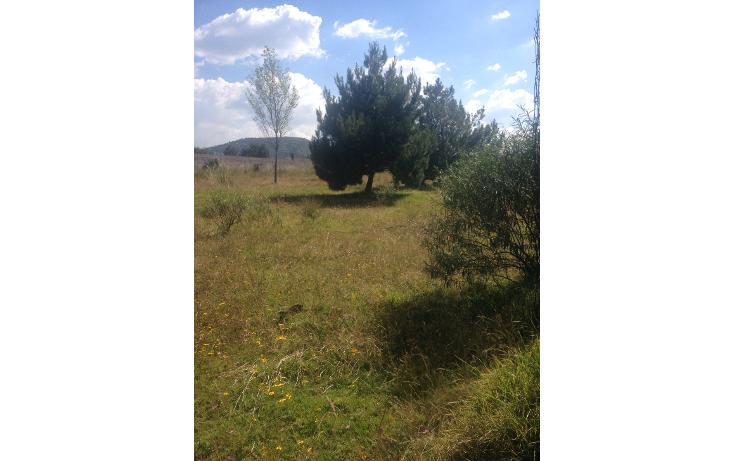 Foto de terreno habitacional en venta en  , cacalomac?n, toluca, m?xico, 1482579 No. 02
