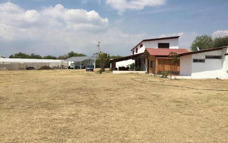 Foto de rancho en venta en  , cacalosuchil, huaquechula, puebla, 1939567 No. 03