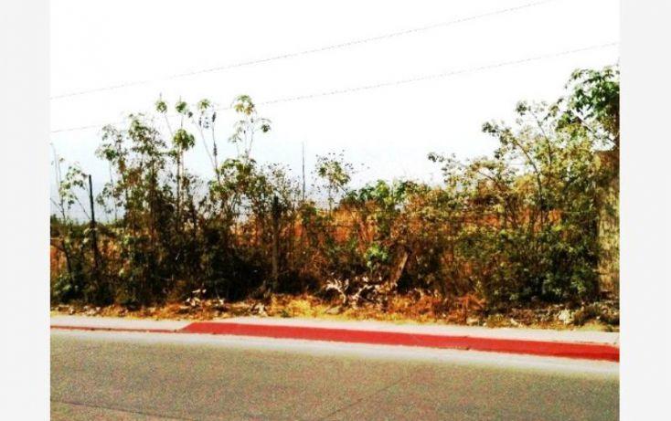Foto de terreno comercial en venta en, cactus, jiutepec, morelos, 1221641 no 03