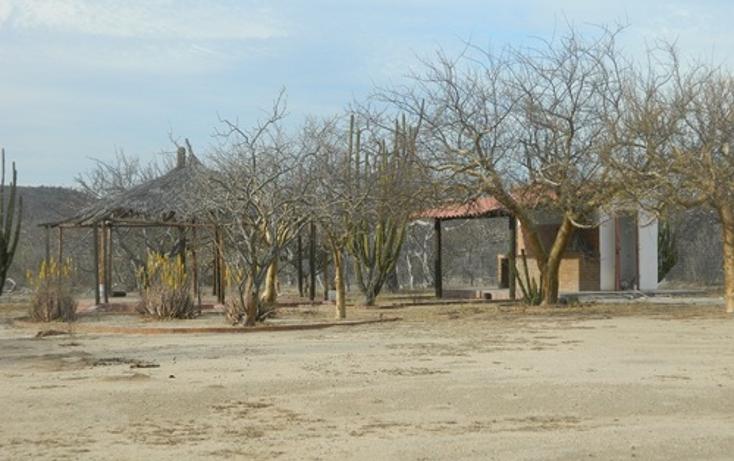 Foto de terreno habitacional en venta en  , calafia, la paz, baja california sur, 1067291 No. 01