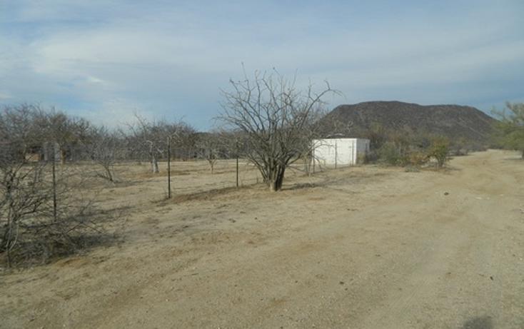 Foto de terreno habitacional en venta en  , calafia, la paz, baja california sur, 1067291 No. 02