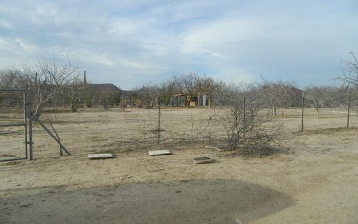 Foto de terreno habitacional en venta en  , calafia, la paz, baja california sur, 1067291 No. 03