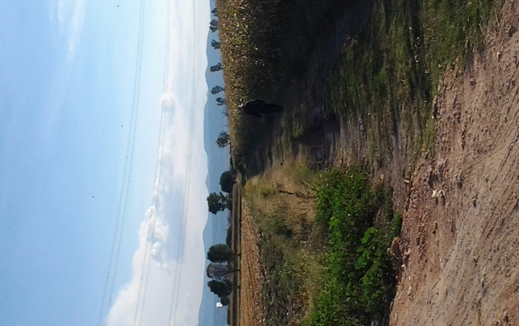 Foto de terreno industrial en venta en  , calamanda, el marqués, querétaro, 1353165 No. 03