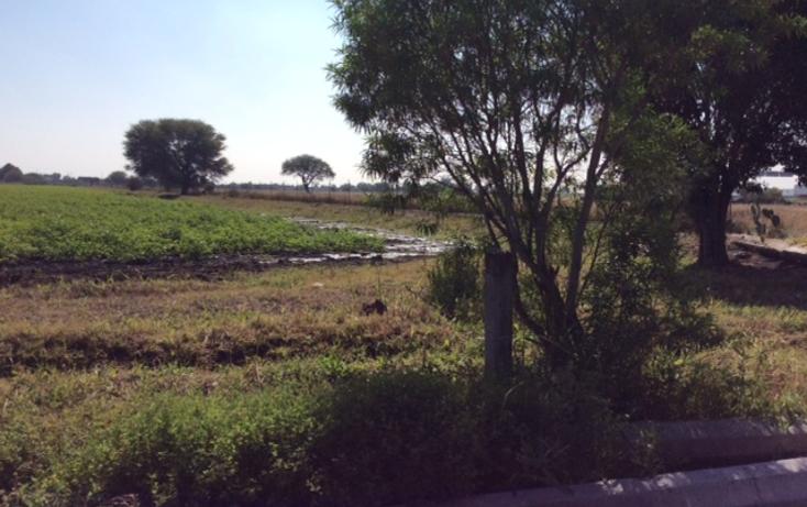 Foto de terreno comercial en venta en  , calamanda, el marqu?s, quer?taro, 1430149 No. 06