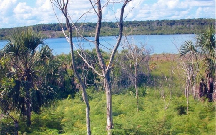 Foto de terreno comercial en venta en  , calderitas, othón p. blanco, quintana roo, 1057255 No. 02