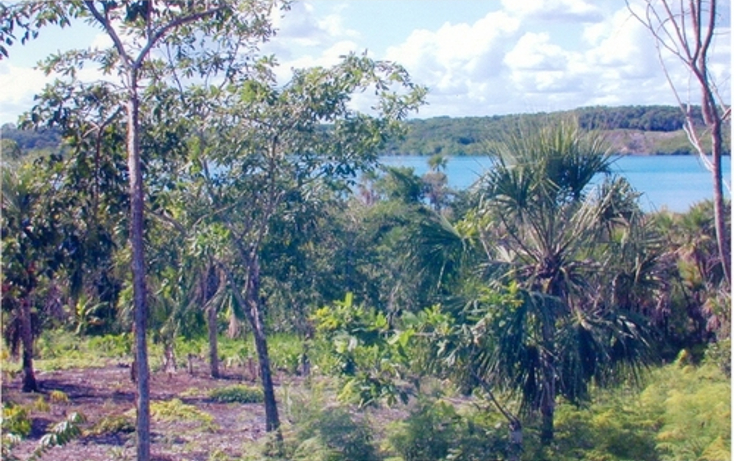 Foto de terreno comercial en venta en  , calderitas, othón p. blanco, quintana roo, 1057255 No. 06