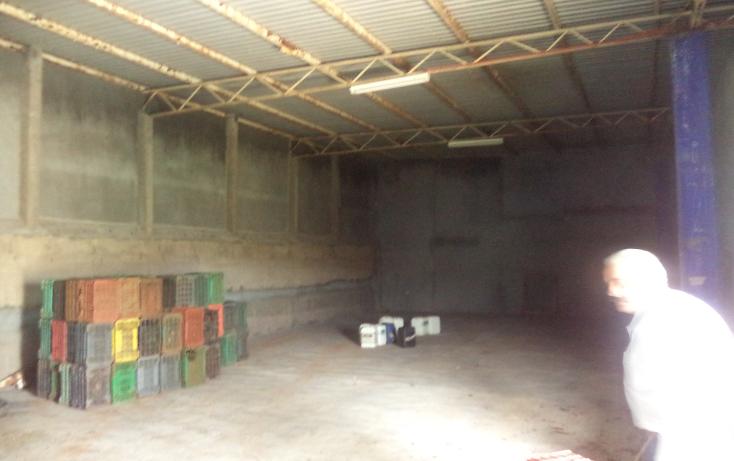 Foto de nave industrial en venta en  , calera de victor rosales centro, calera, zacatecas, 1168997 No. 09