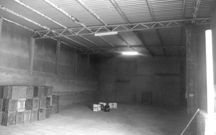 Foto de nave industrial en venta en  , calera de victor rosales centro, calera, zacatecas, 1168997 No. 10