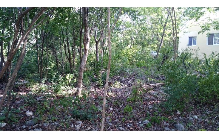 Foto de terreno habitacional en venta en  , caleta chac malal, solidaridad, quintana roo, 1141097 No. 02