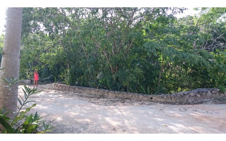 Foto de terreno habitacional en venta en  , caleta chac malal, solidaridad, quintana roo, 1141097 No. 03
