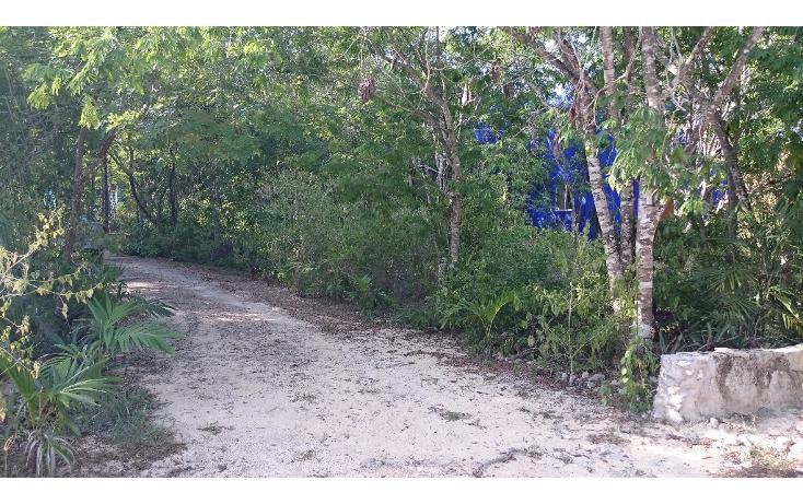 Foto de terreno habitacional en venta en  , caleta chac malal, solidaridad, quintana roo, 1141097 No. 04