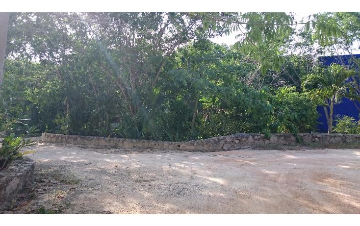 Foto de terreno habitacional en venta en  , caleta chac malal, solidaridad, quintana roo, 1141097 No. 06