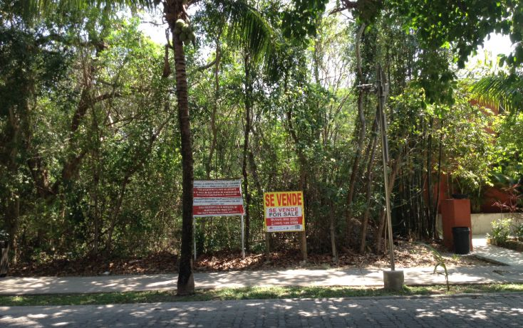 Foto de terreno habitacional en venta en, calica, solidaridad, quintana roo, 1777226 no 01