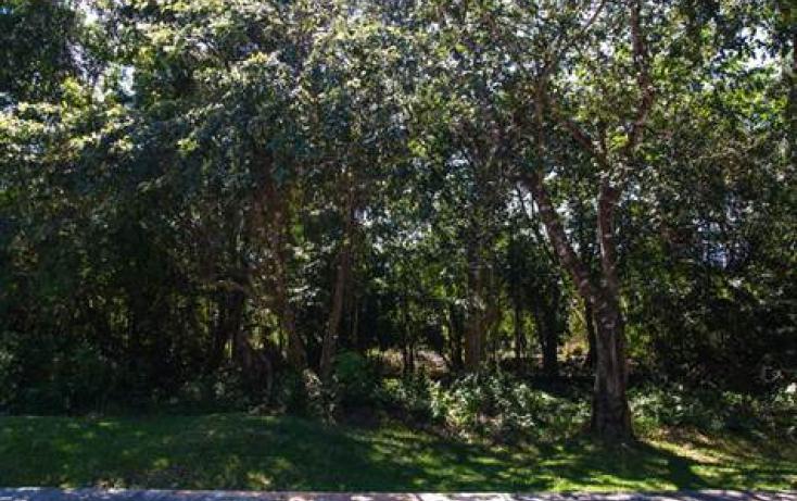 Foto de terreno habitacional en venta en, calica, solidaridad, quintana roo, 723971 no 05